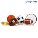37065_AGD спорт